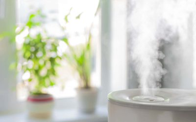 What's the Difference Between a Humidifier and a Dehumidifier?